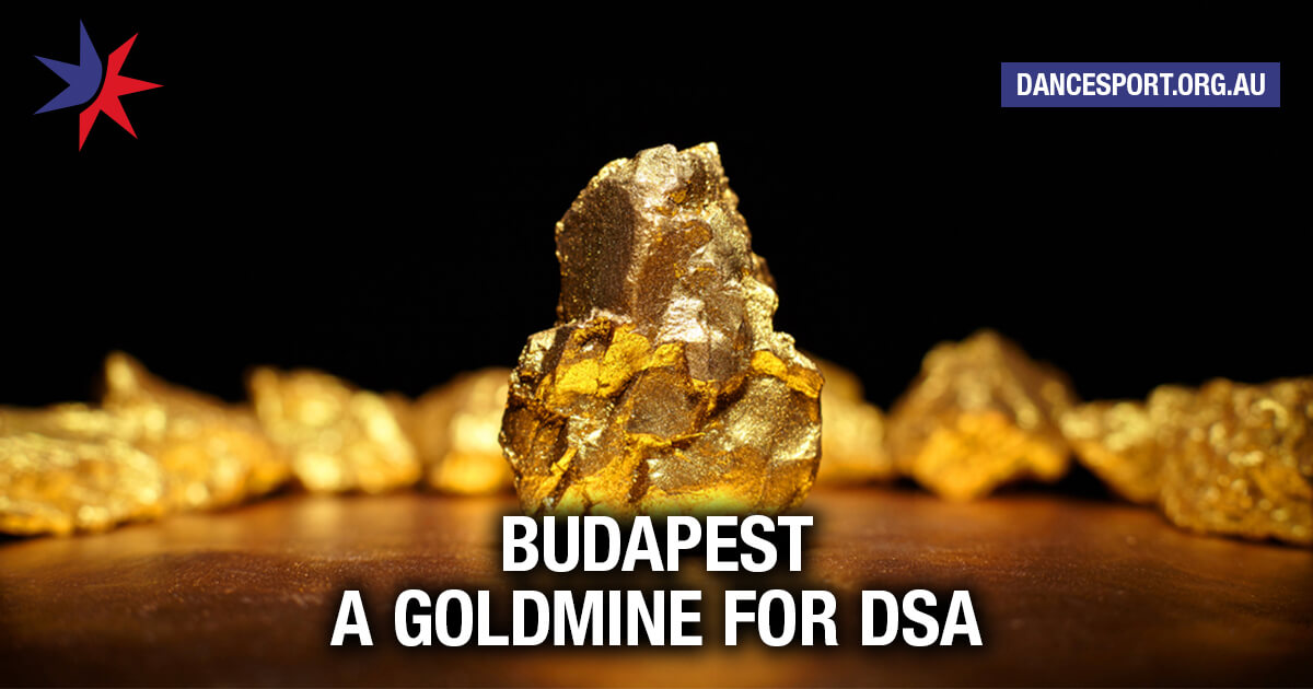 Budapest meeting a goldmine for DSA